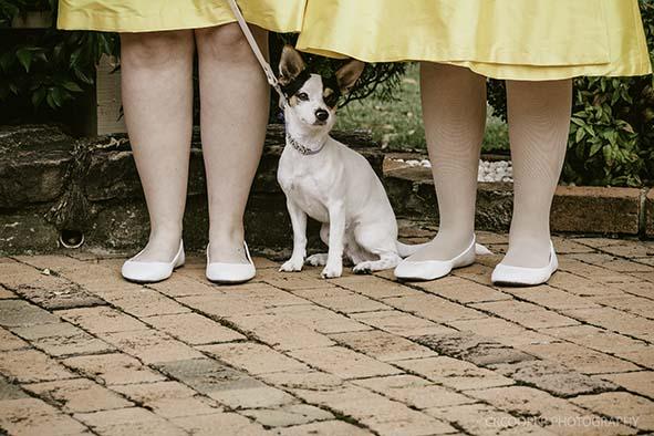 Jen&Craigs Wedding-Ceremony-CrcooperPhotographgy-25