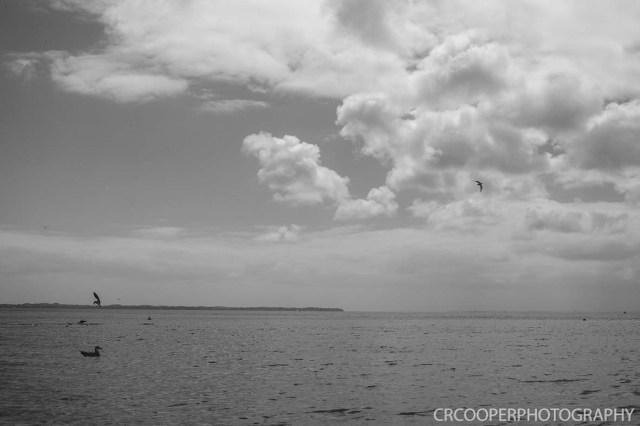 RosebudBeach-CrcooperPhotography-06
