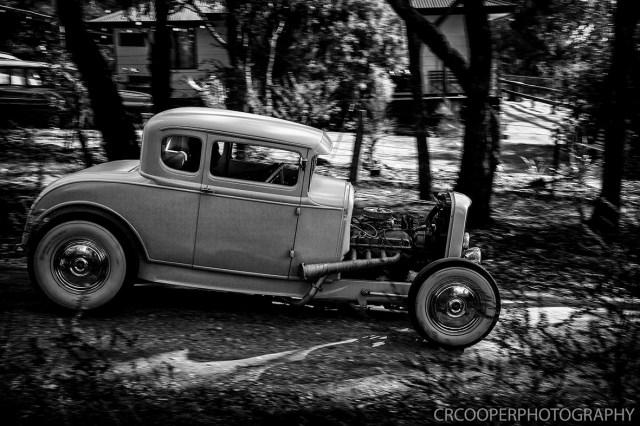 KangarooBoogaloo-CrcooperPhotography-15