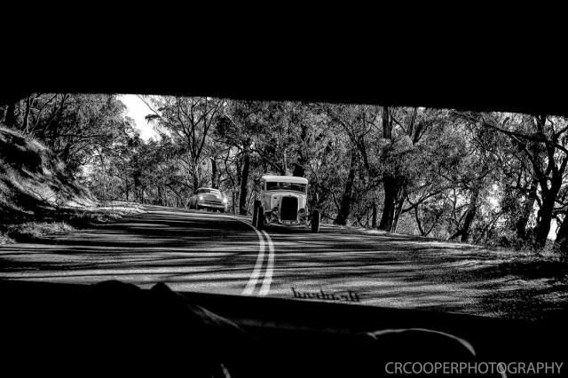 KangarooBoogaloo-CrcooperPhotography-78