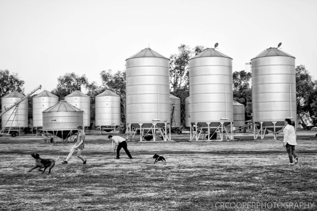 Nate & Sj-PostCeremony-LowRes-CrcooperPhotography-125