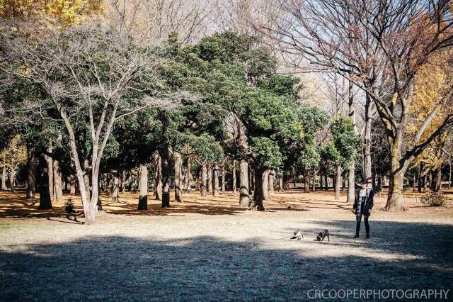 MooneyesJapan-Day5-CrcooperPhotography-021 copy