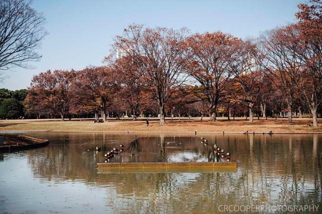 MooneyesJapan-Day5-CrcooperPhotography-026 copy
